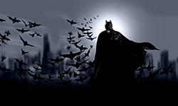Festa Infantil Batman | Festabox