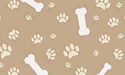 Festa Infantil Cachorrinhos | Festabox